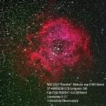 Rosette NGC2273 ST4000XCM 100min.jpg